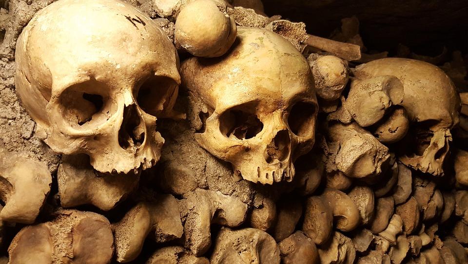 Katakomben Paris Schädel · Kostenloses Foto auf Pixabay