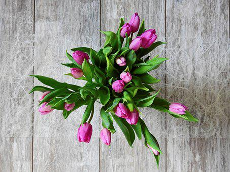 Flower Tulips Blossom Bloom Bouquet
