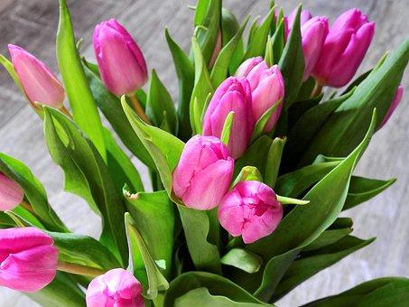 bouquet, d'anniversaire - images gratuites sur pixabay