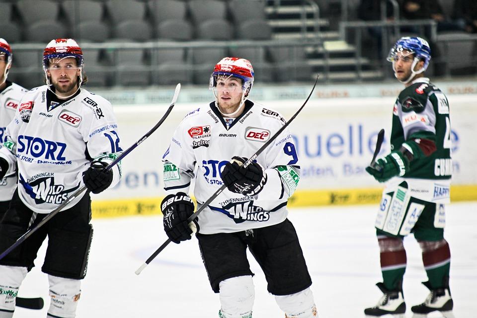 Ice Hockey, Schwenningen, Wild Wings