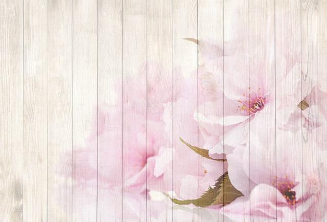 on wood pink  u00b7 free image on pixabay