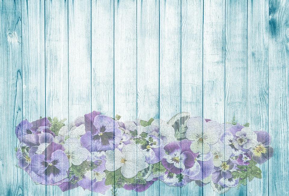 Violette sur bois t image gratuite sur pixabay - Image fleur violette gratuite ...