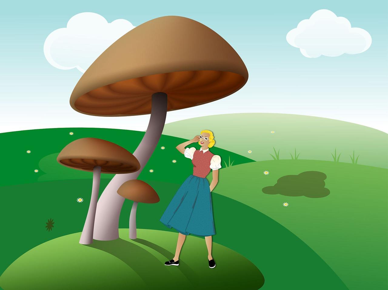 этом анимационные картинки о грибах эхнатон сделал