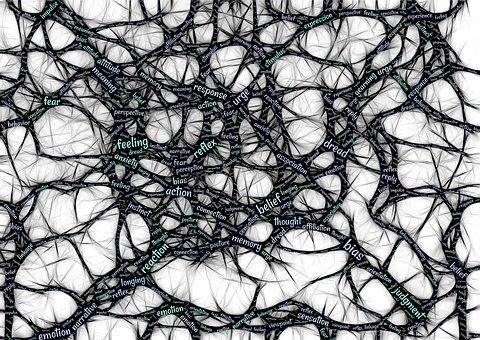 Mindset, Neuroscience, Thoughts