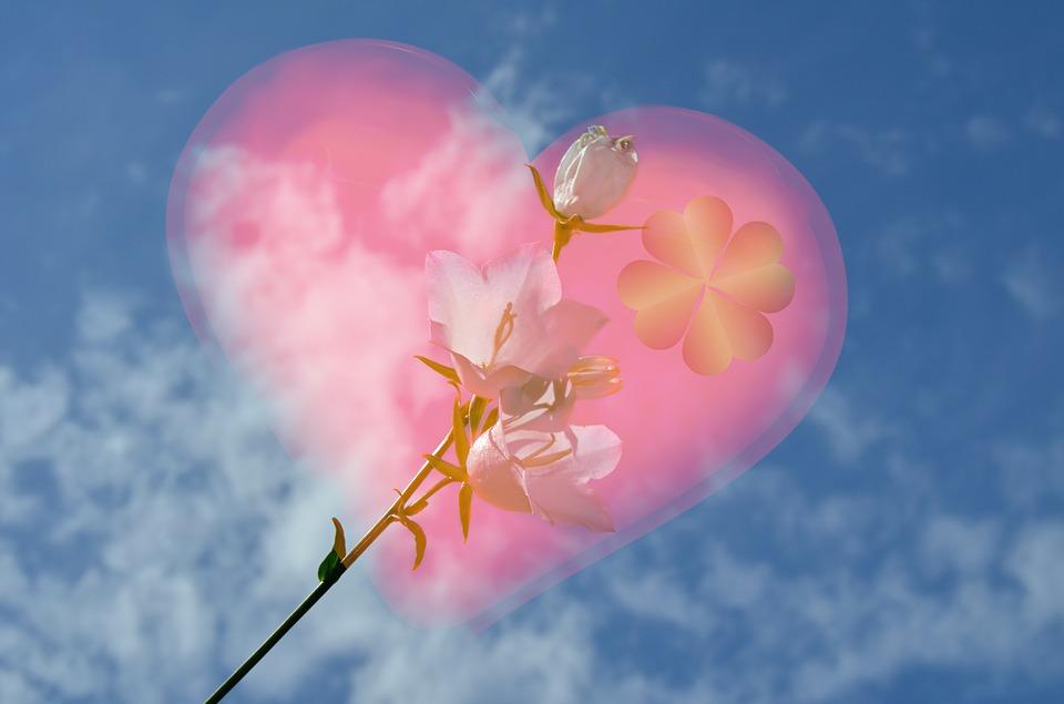 Фото в сердце цветок