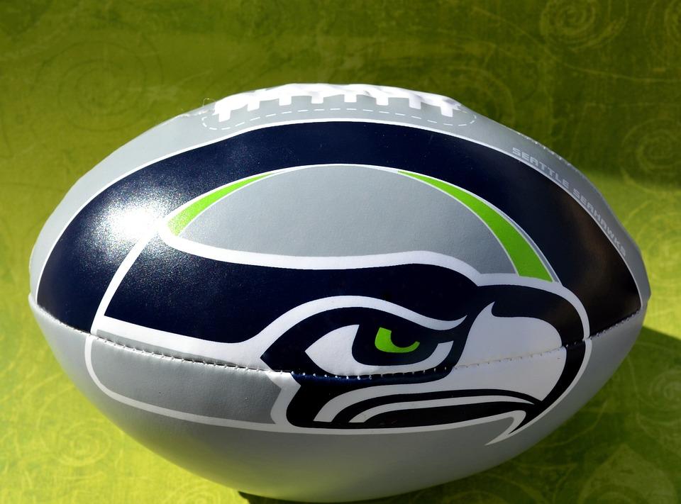 Seattle Seahawks Seahawk Free Photo On Pixabay