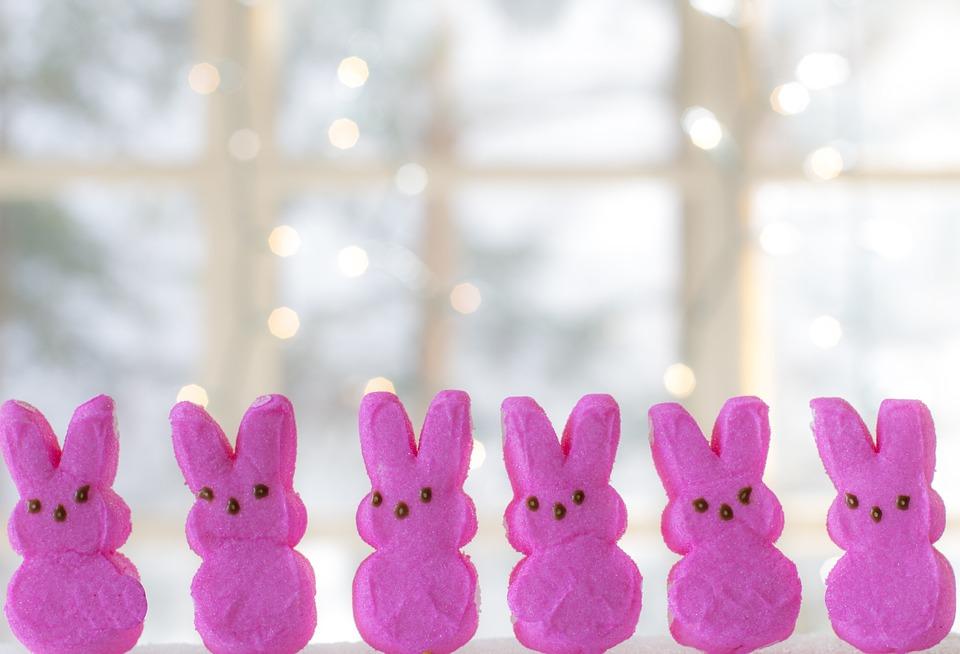 Easter Bunny Peeps Pink - Free photo on Pixabay