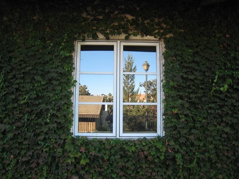 Lumiere isolation Changer ses Fenêtre