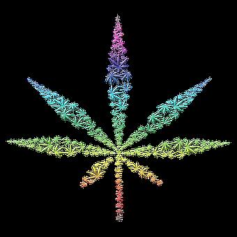 Cannabis, Weed, Marijuana, Hemp, Plant