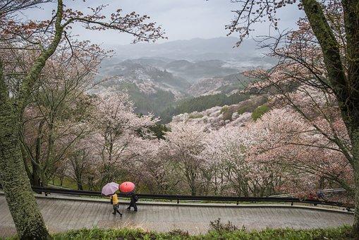 Krajina, Japonsko, Prefektura Nara