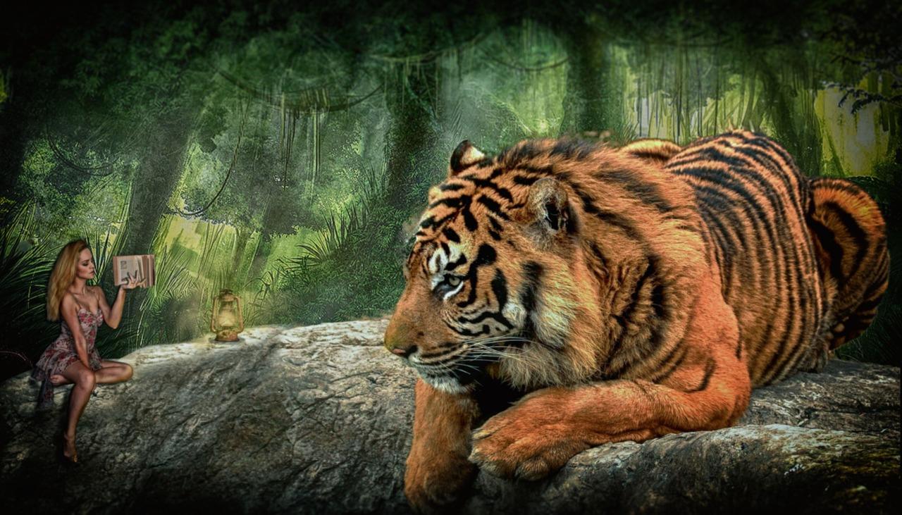 картинки фэнтези и тигры