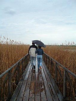 Weg, Paar, Schirm, Spaziergang, Regen