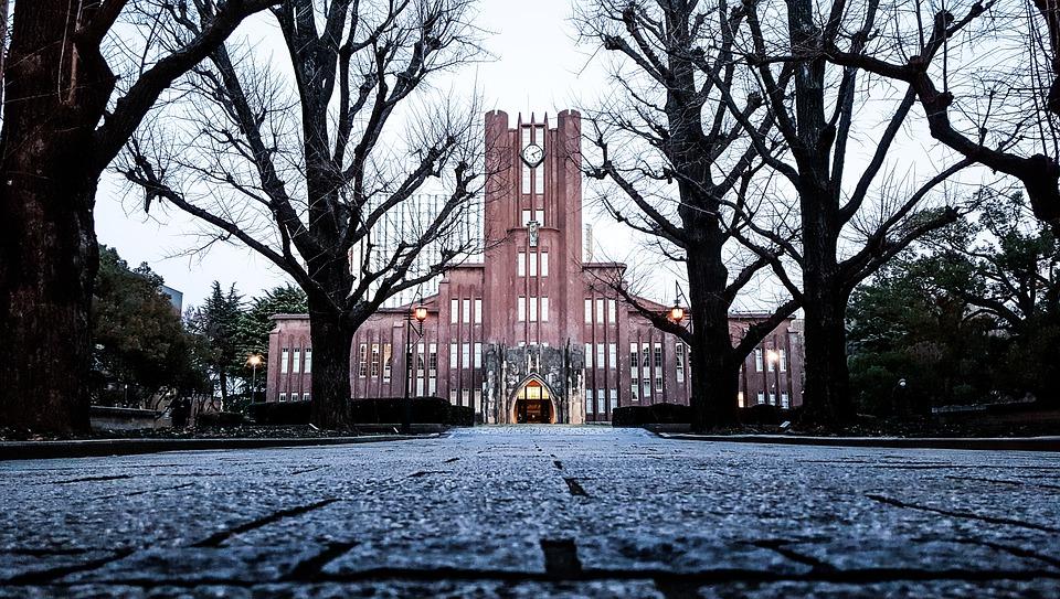 日本の大学の就職率ランキング|文系理系別と主な業種別