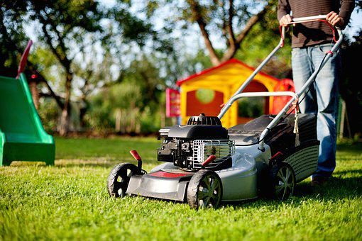 Lawn Mower, Lawn Mowing, Rush, Mow, Man