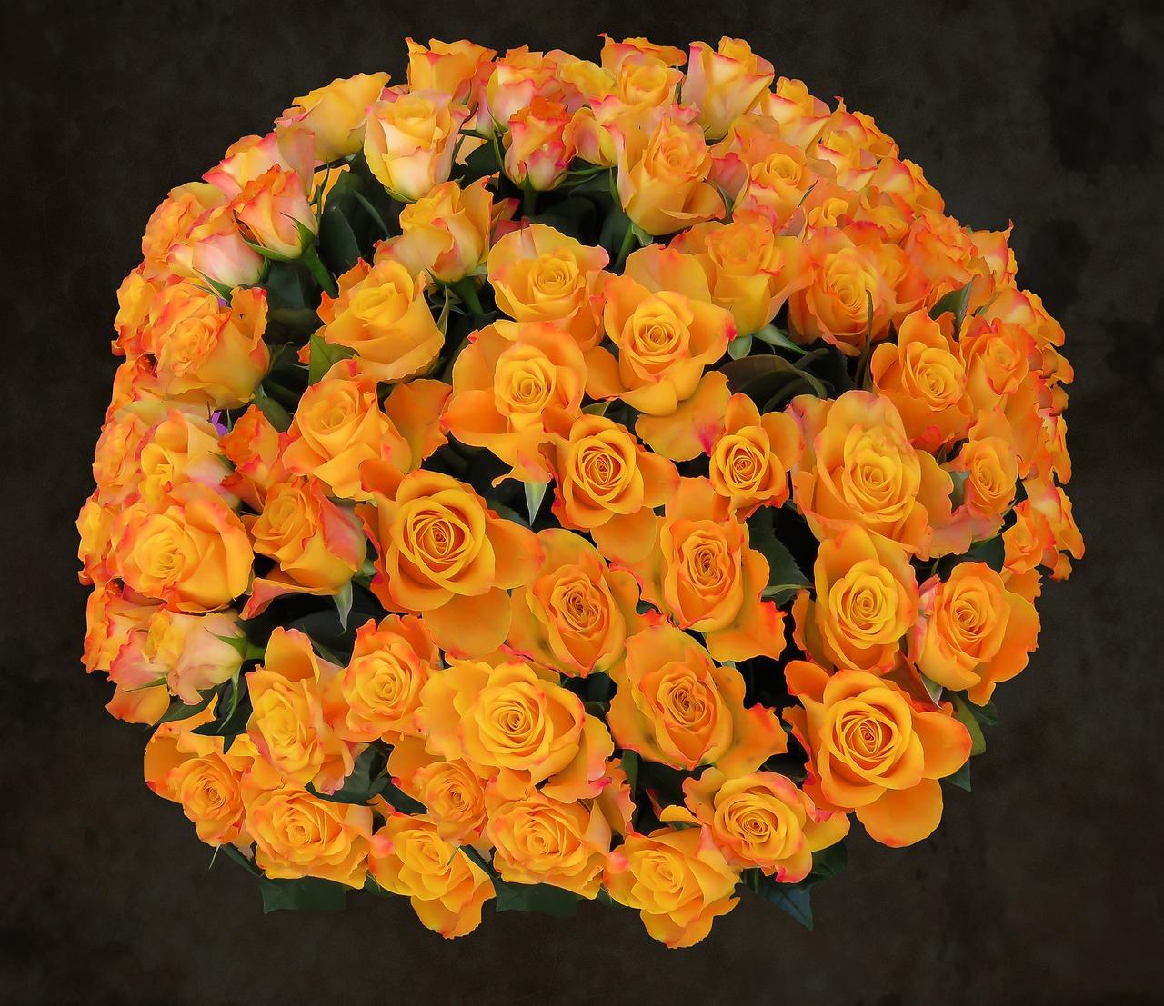 были с днем рождения картинки цветы оранжевые владельцы