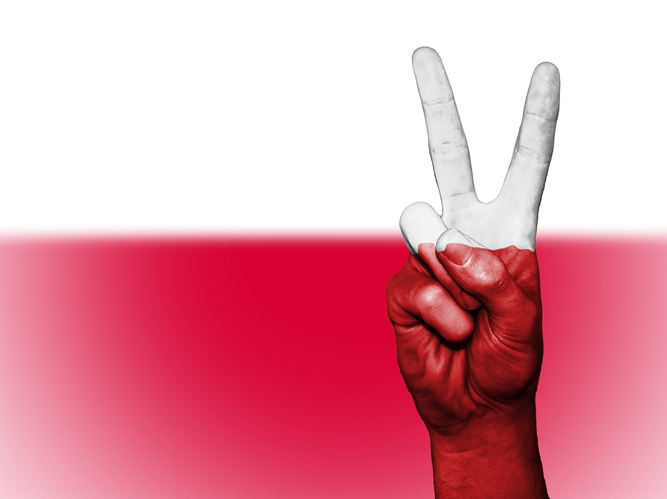 Poland early parliamentary election odds