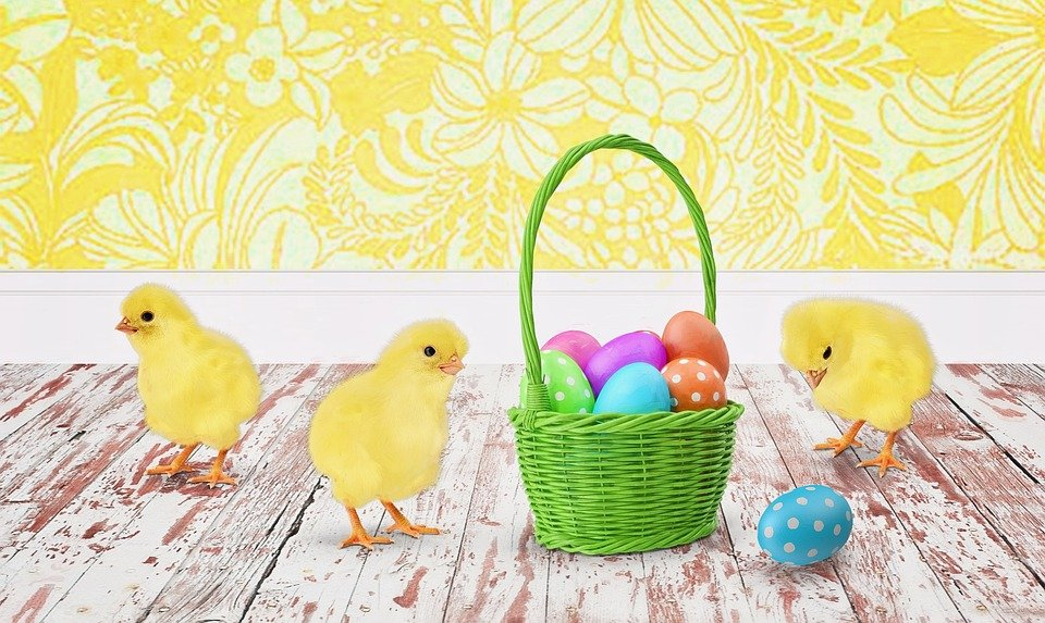 easter-eggs-and-chicks