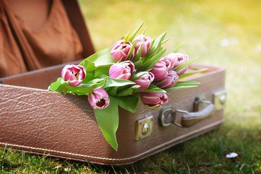 荷物, チューリップ, スプリング, 花, 春の花, 自然, ピンク, 花の花束