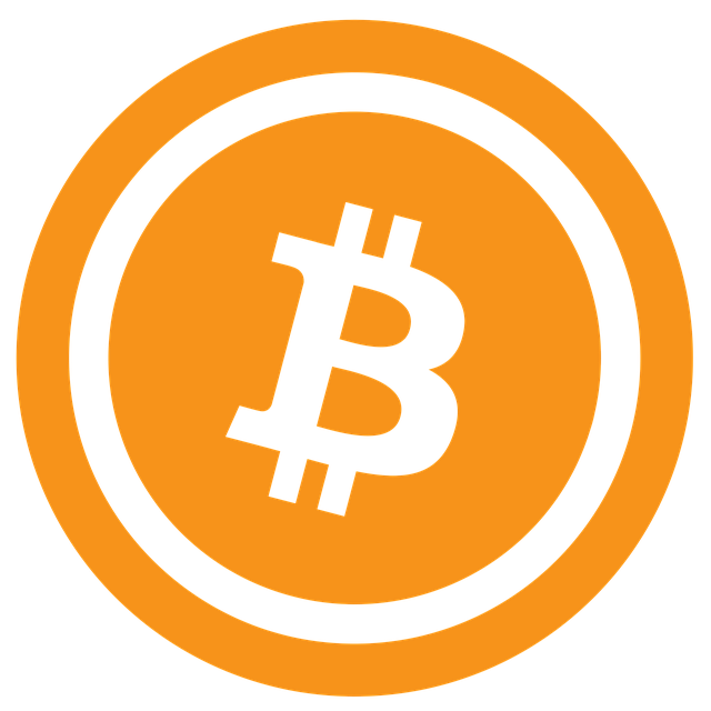https://cdn.pixabay.com/photo/2017/03/12/02/57/bitcoin-2136339_640