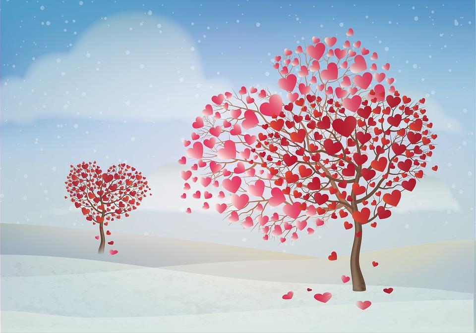 Valentine Day Tree Valentines Free Image On Pixabay