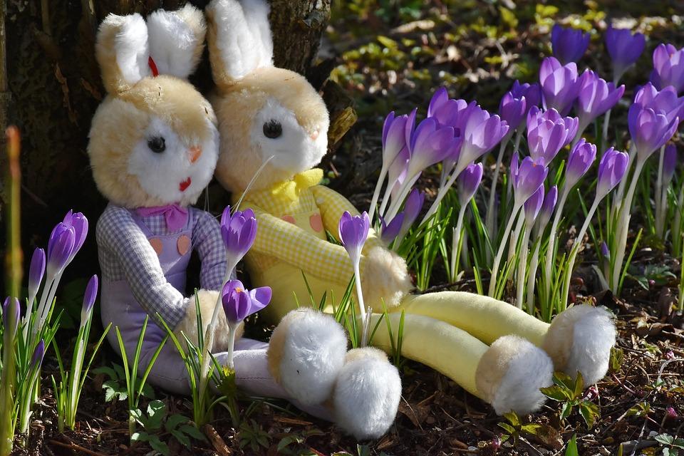Królik, Krokus, Wielkanoc, Zabawki, Dekoracyjne, Wiosna