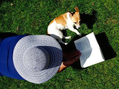 Hat, Book, Read, Pet, Relax, Grass