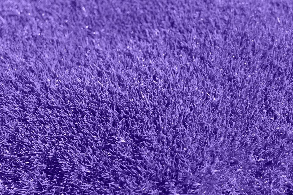 Free photo background purple grass lilac free image for Purple grass