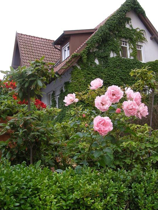 Single Family Home House Garden , Free photo on Pixabay