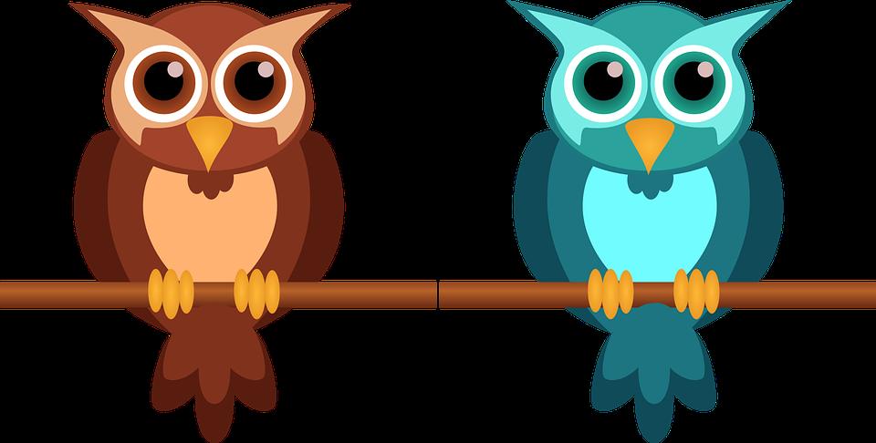 96+  Gambar Burung Hantu Kartun Lucu  Paling Keren Gratis