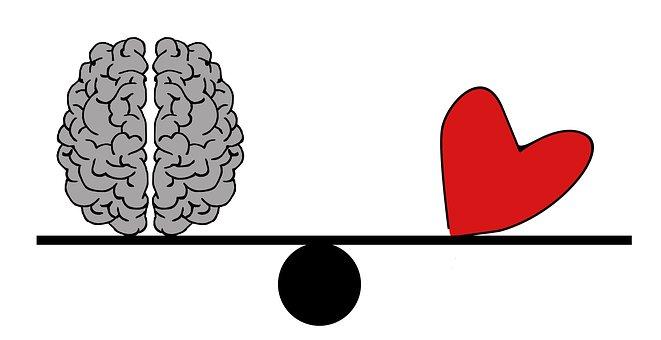 Cerebro, Cabeza, Psicología