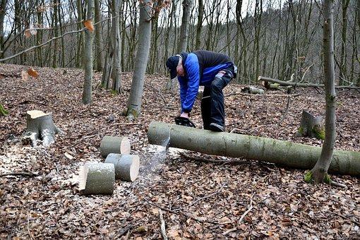 Lumberjack, Chainsaw, Woodworks
