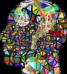 head, human, brain