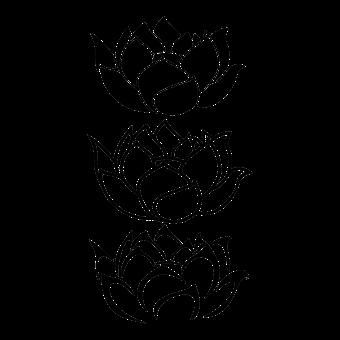 Bevorzugt Fleur, De, Lotus - Images gratuites sur Pixabay IY45