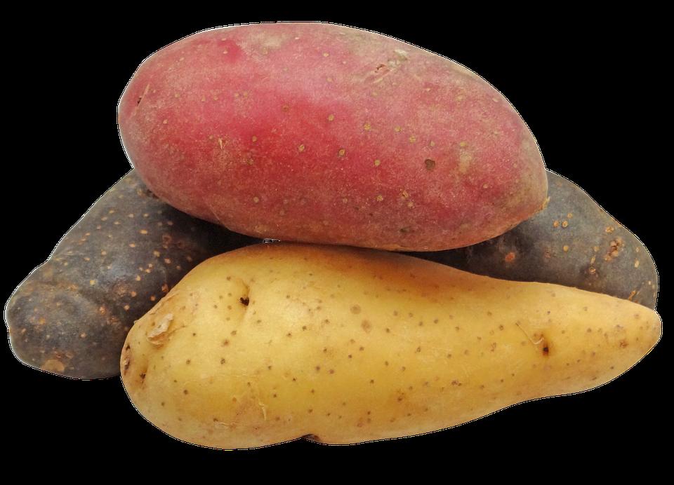Patata, Fingerling, Arcobaleno, Patate
