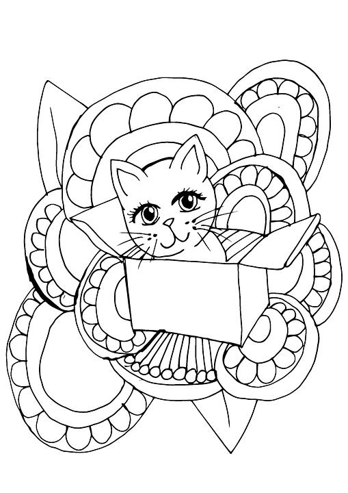 Sevimli Kedi Boyama Sayfası Pixabayde ücretsiz Resim