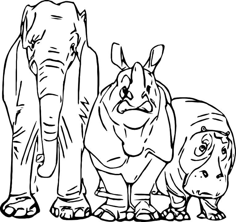 82 Gambar Sketsa Hewan Gajah Gratis Terbaik