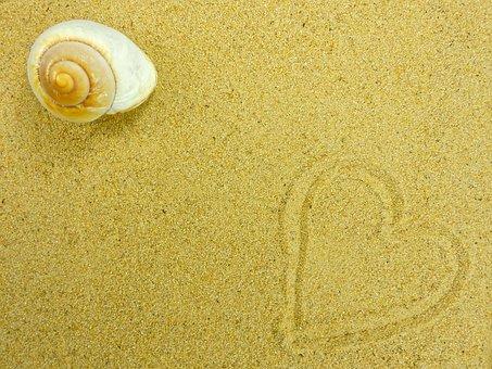 Sand Beach Shell Nature Summer Backgr