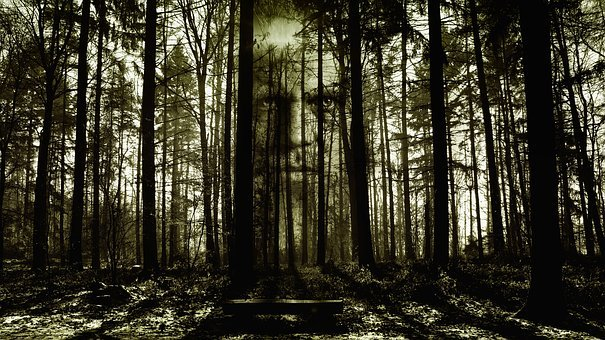 Horror, Face, Forest, Spirit, Zombi