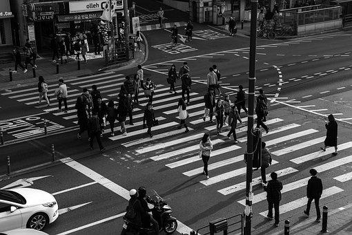 信号機, 横断歩道, 人々, 交差点, 노량ジン, セット, 学生, 交差
