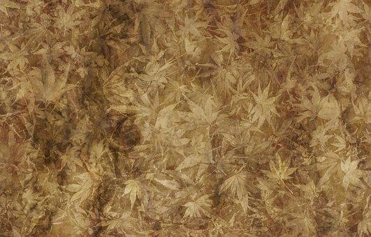 Parchment Paper Leaves Old Texture Ba