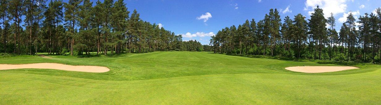 ゴルフ, 緑, フェアウェイ, フォレスト, 木
