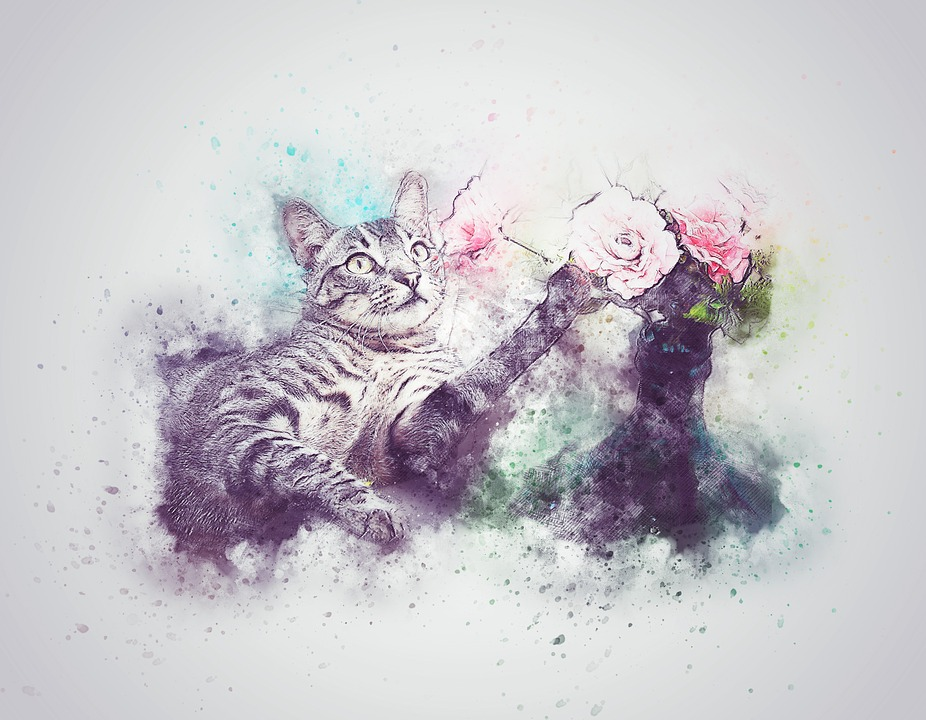 cat pet flower free photo on pixabay