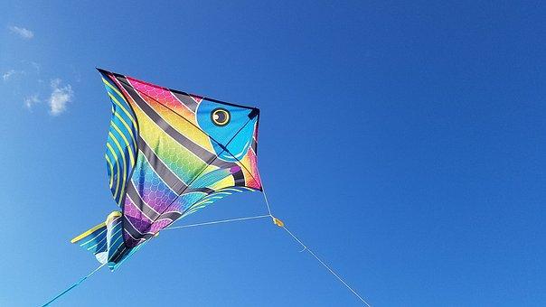 Kite, Jacksonville, Florida, Kite, Kite