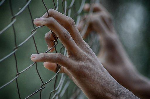 フェンス, 自由, 刑務所, 手, 指, 閉じる