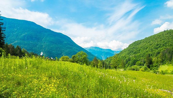Slovenia Alpine Mountains Meadow Nature Sk