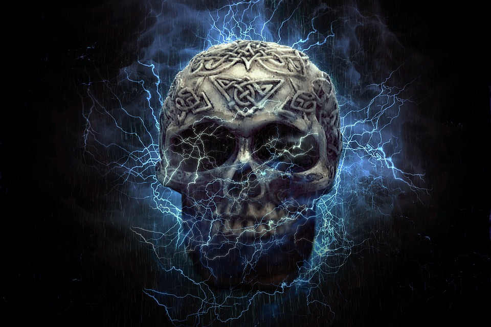 skull - free images on pixabay, Human Body