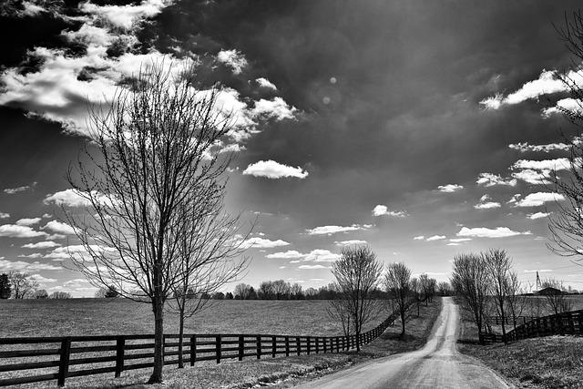 kentucky-farm-scenery