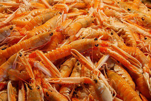 Food Eat Seafood Shrimp Crustaceans Nutrit