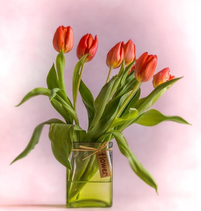 Tulpen Op Vaas.Tulpen Vaas Rood Gratis Foto Op Pixabay