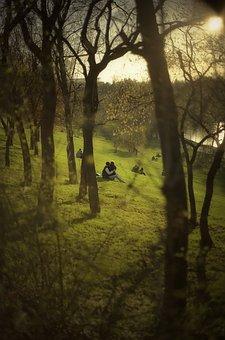 Couple, Grass, Green, Hill, Kissing